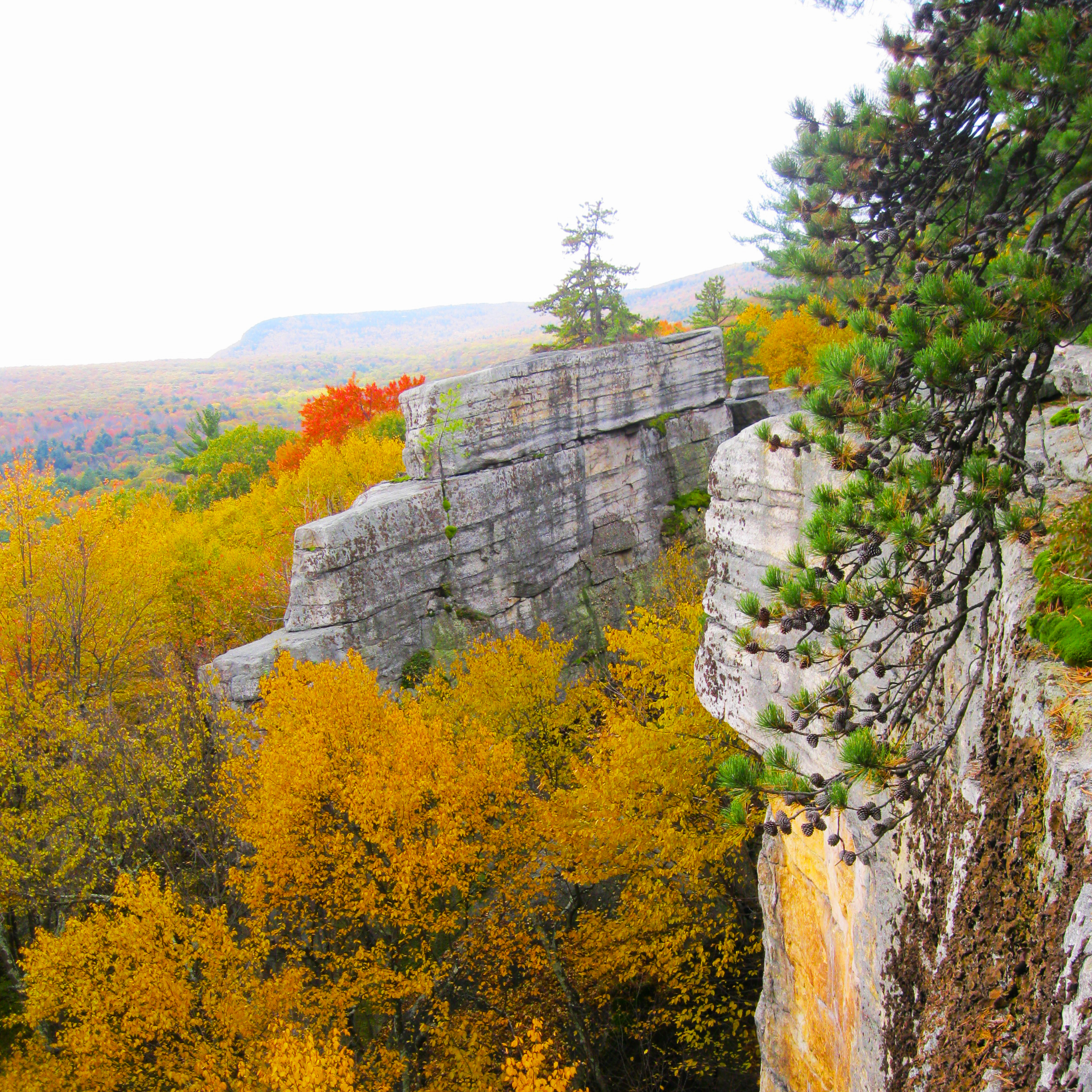 The Shark Fin rock outcropping of Lost City, and cliffs surrounded by yellow autumn trees