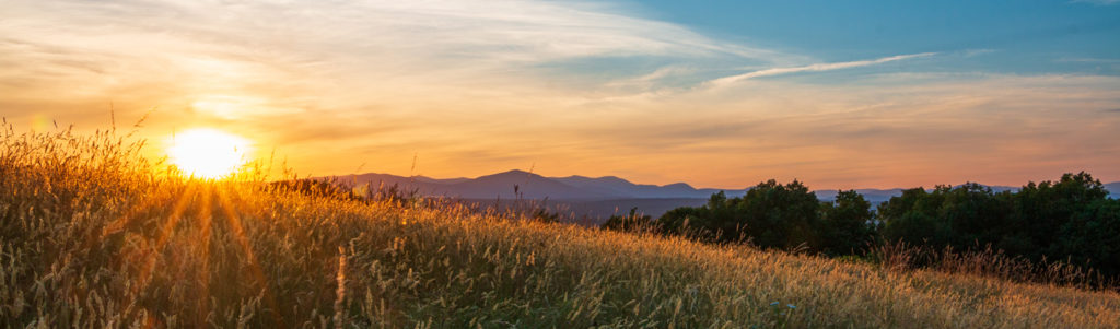 Sunset behind the Catskills in the background with a field of summer grass in the foreground