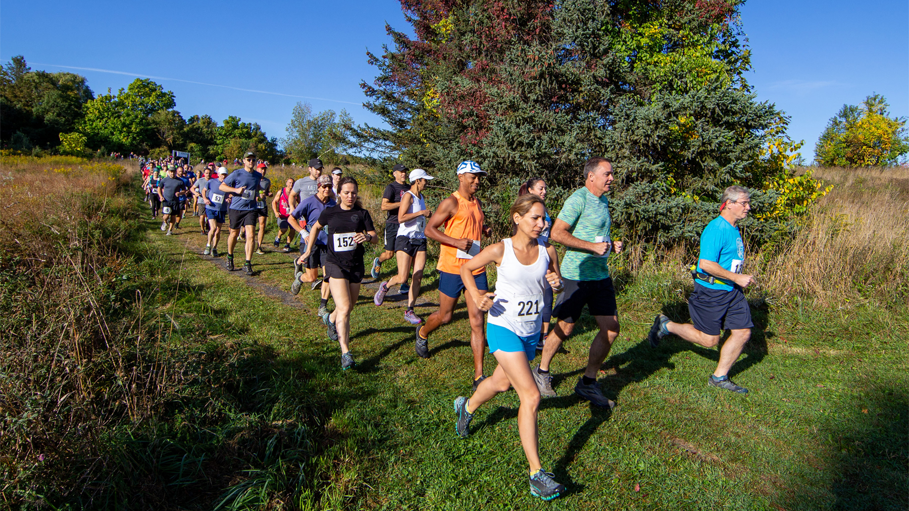A group of runners on a mowed path