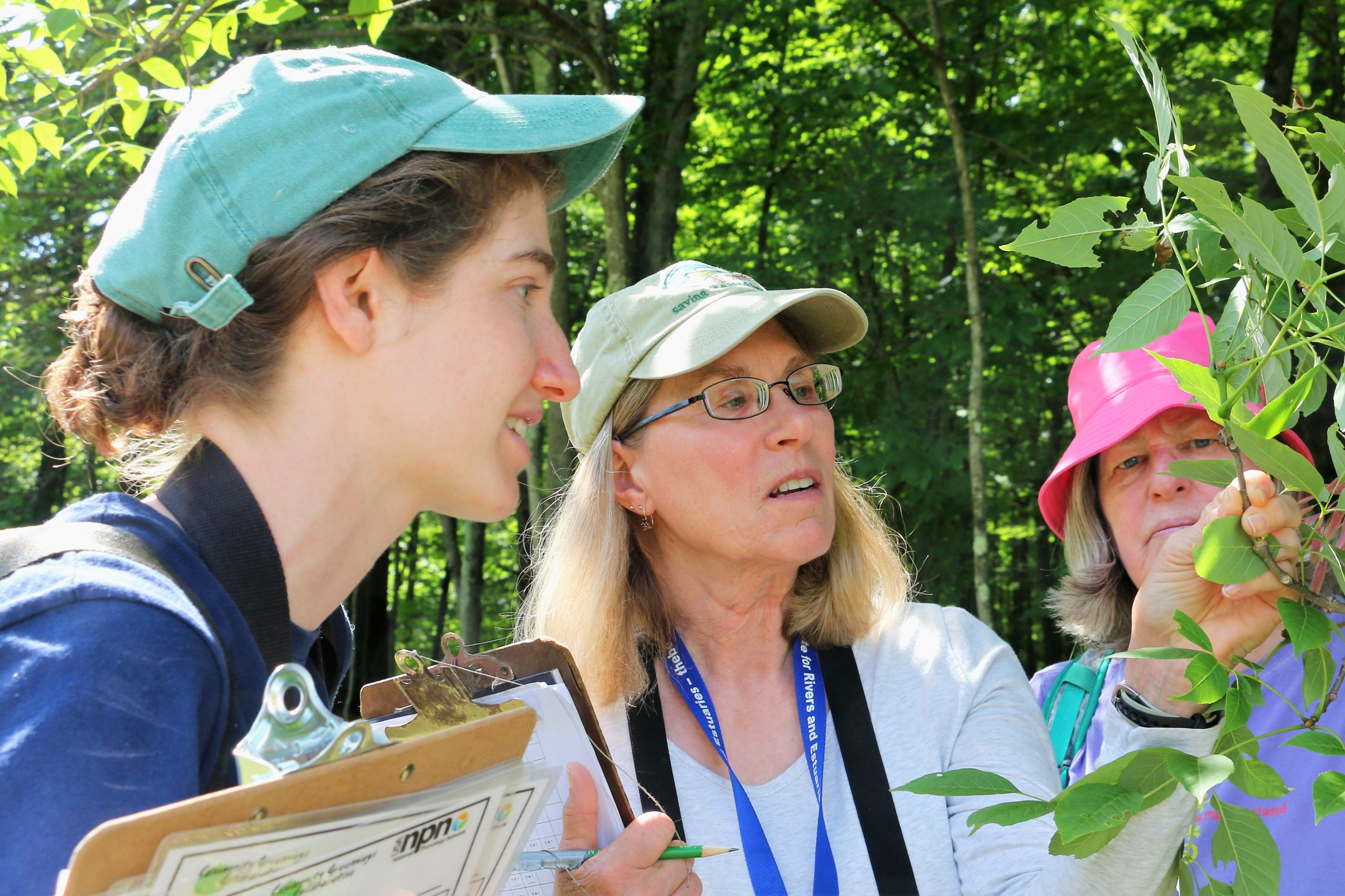 Carol Rietsma at a phenology orientation looking at a branch with a staff member and citizen scientist